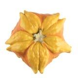 Courge orange et jaune d'isolement Image libre de droits