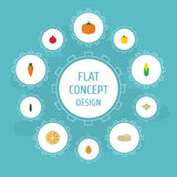 Courge plate d'icônes, racine, papaye et d'autres éléments de vecteur L'ensemble de symboles plats d'icônes de fruit inclut égale Image stock