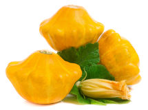 Courge trois pattypan jaune avec la feuille et la fleur d'isolement sur le fond blanc Images stock