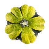 Courge verte et jaune d'isolement Photos libres de droits
