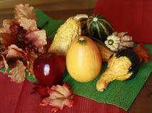 Courges d'automne avec des lames images libres de droits