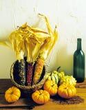 Courges de maïs d'Incdian et bouteille de vin Photographie stock