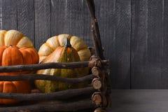 Courges et potirons décoratifs Photos stock
