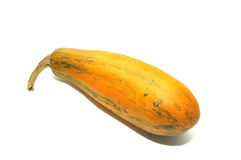 Courgette Stock Photos
