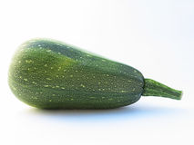 Courgette photographie stock libre de droits