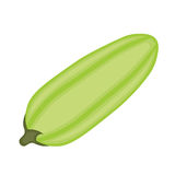 Courgette. Royalty Free Stock Photos