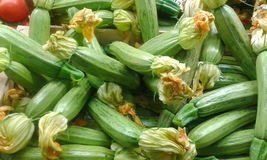 Courgette with flowers in italian market Royalty Free Stock Images