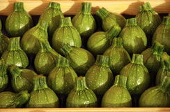 Courgette. Fresh green courgette on vegetable market royalty free stock images