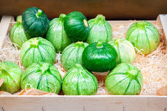 Courgette ronde Photos stock