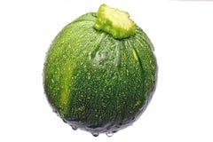 Courgette ronde de zuchinni Image stock