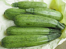 Courgettes aka zucchini vegetables Stock Photography