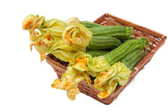 Courgettes  with flowers in brown basket focus on flowers isolat. Bunch of fresh raw courgettes  with selective focus on yellow flowers in brown basket isolated Royalty Free Stock Photos