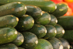 Courgettes Royalty Free Stock Photography