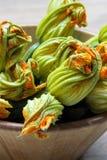 Courgettes z ich kwiatem Zdjęcie Stock