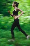 Courir dans la forêt Photo libre de droits
