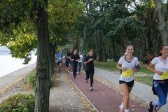 Courir en stationnement Matin pulsant en parc Les concours et le marathon dans la forme physique et la santé de Budapest Photo libre de droits