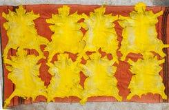 Couro amarelo, colorido com açafrão, curtume tradicional, fez, Imagem de Stock