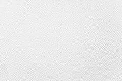 Couro branco Imagem de Stock Royalty Free