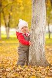 Couro cru bonito novo do bebê atrás da árvore no parque do outono Imagem de Stock Royalty Free