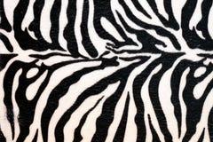 Couro cru da zebra fotografia de stock royalty free