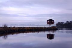 Couro cru lateral da observação de pássaro do lago no crepúsculo Foto de Stock