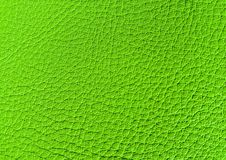 Couro do verde do UFO imagem de stock