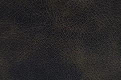 Couro marrom do clarete, de couro Armadura, close up fotos de stock