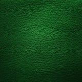 Couro verde Fotos de Stock