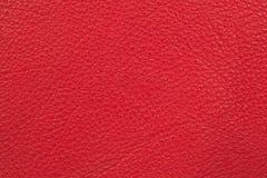 Couro vermelho Imagem de Stock Royalty Free