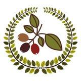 couronne des feuilles avec la branche de caféier Photo libre de droits