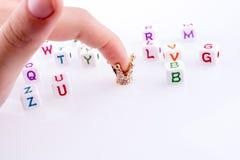 Couronne entre les cubes en lettre image libre de droits