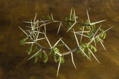 Couronne naturelle de branche d'épine sur le fond grunge brun - conceptu image stock
