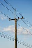 Courrier électrique rural par la route Photo stock