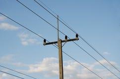 Courrier électrique rural par la route Photographie stock libre de droits