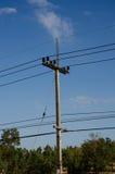Courrier électrique rural par la route Photo libre de droits