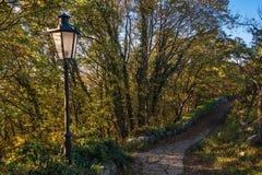 Courrier de lampe d'automne Photo libre de droits
