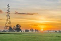 Courrier ou tour à haute tension de haute tension dans le domaine de riz, lever de soleil Photographie stock