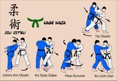 Courroie verte de Jiu Jitsu illustration stock