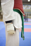 Courroie verte de Taekwondo Photos stock
