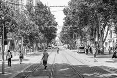 Cours Belsunce马赛,法国的黑白图象 免版税库存照片