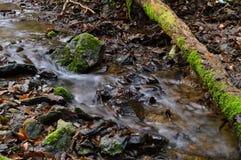cours d'eau Photographie stock