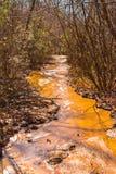 Cours d'eau d'argile en parc d'état de canyon de Providence, la Géorgie, Etats-Unis Images libres de droits