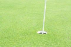 Cours do golfe Fotos de Stock Royalty Free