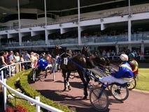 Course d'attelages en Alexandra Park Raceway à Auckland Nouvelle-Zélande Images libres de droits