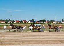 Course d'attelages sur le champ de courses de Karlshorst Photo libre de droits