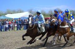 Course de cheval Photographie stock