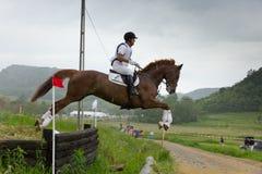Course de cheval de pays croisé Image stock
