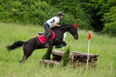Course de cheval de pays croisé Photo libre de droits