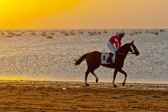 Course de cheval sur Sanlucar de Barrameda, Espagne, août 2011 Photos stock