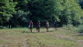 Course de chevaux Image stock